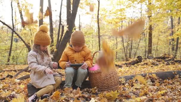 Kinder nutzen Smartphone im Wald