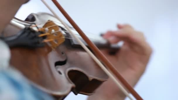 Violinist man playing the violin on a white background. Close up.
