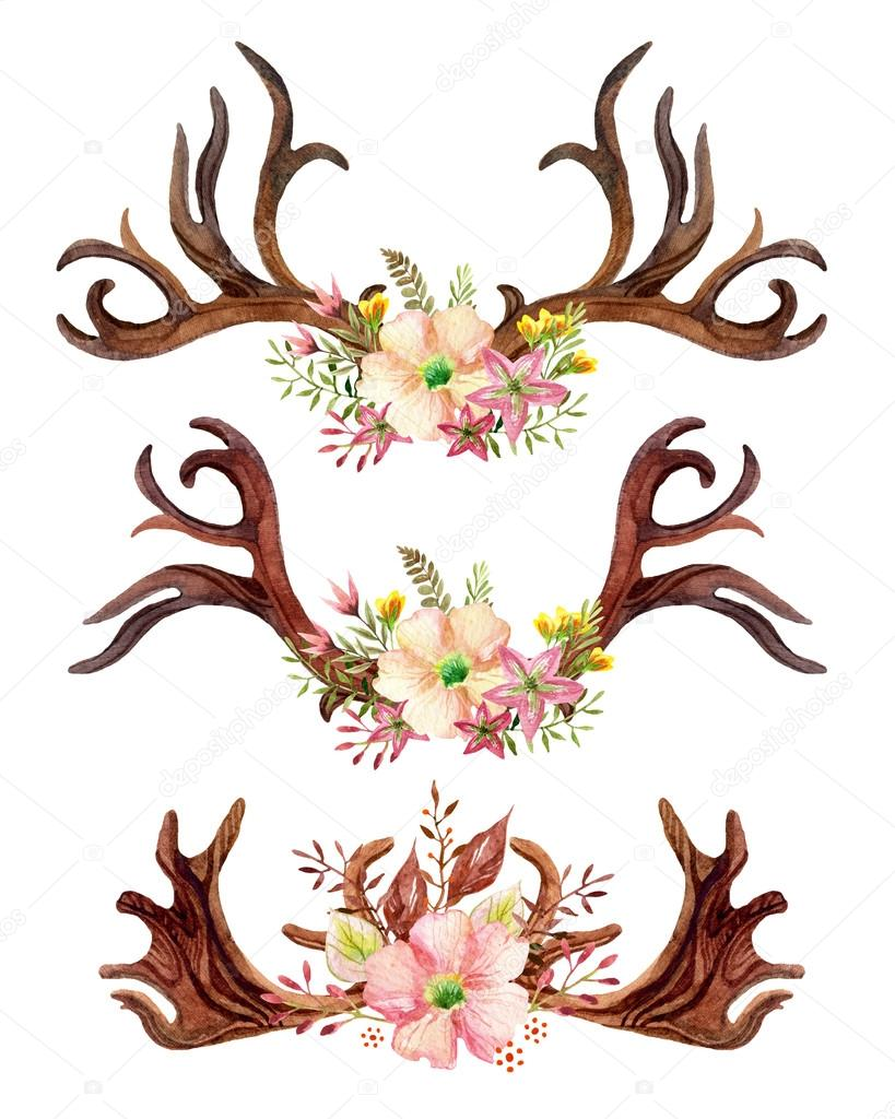 Watercolor floral antler.