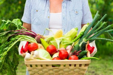 Close up Woman wearing gloves with fresh vegetables in the box i