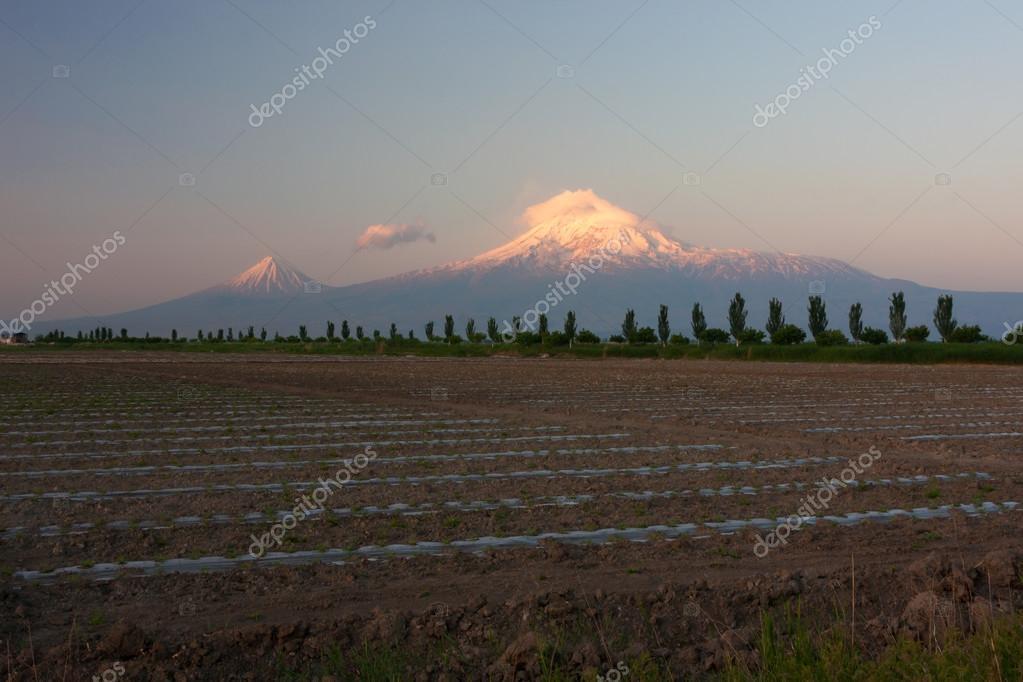 Sunrise on Mount of Ararat