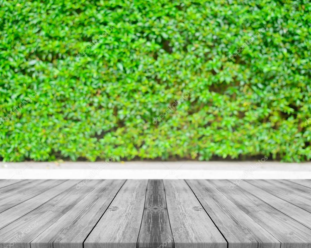Wooden board empty table in front of blurred background. Perspective white wood over blur trees in forest - can be used for display or montage your products. spring season. vintage filtered image.
