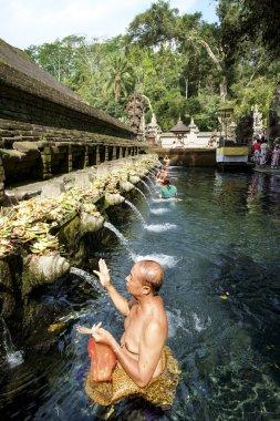 Balinese people praying at the Holy Water.