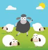 Fotografie Schwarze Schafe mit machen einen Unterschied
