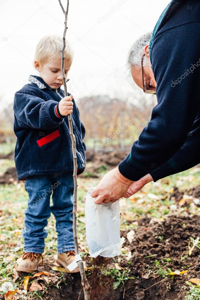 Grandson with his grandfather planted fruit seedling