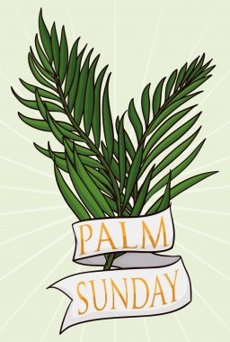 Couple of Branches with Ribbon for Palm Sunday, Vector Illustration