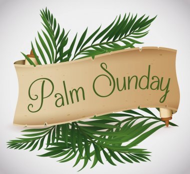 Ancient Scroll with Palm Branches behind for Palm Sunday Holiday, Vector Illustration
