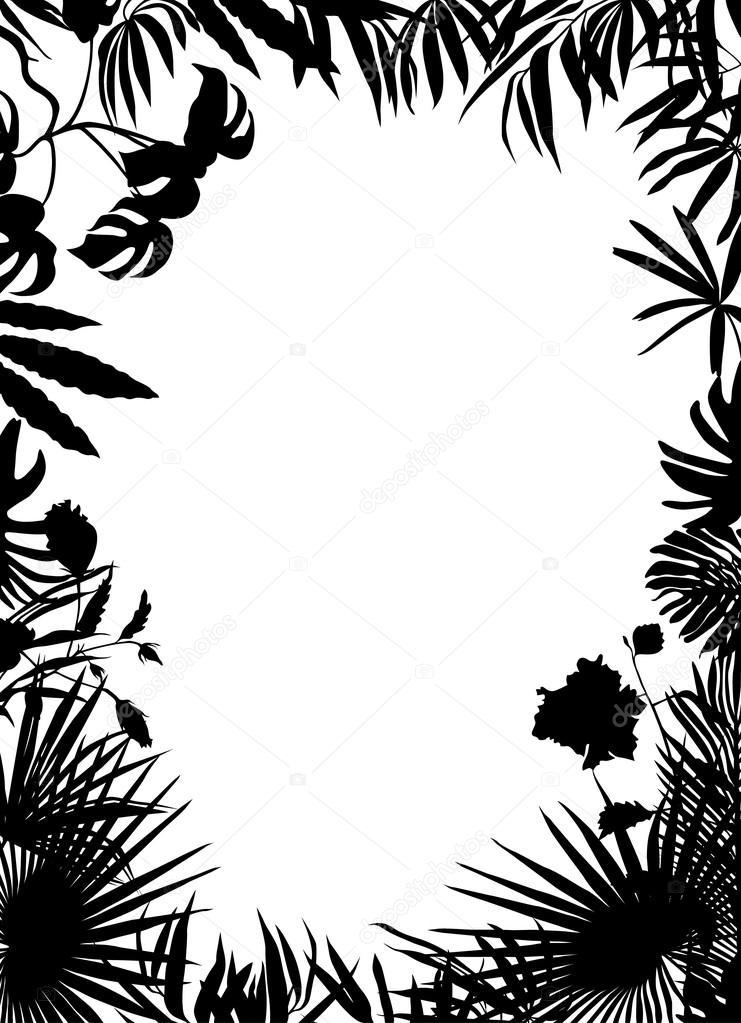 BW tropical frame