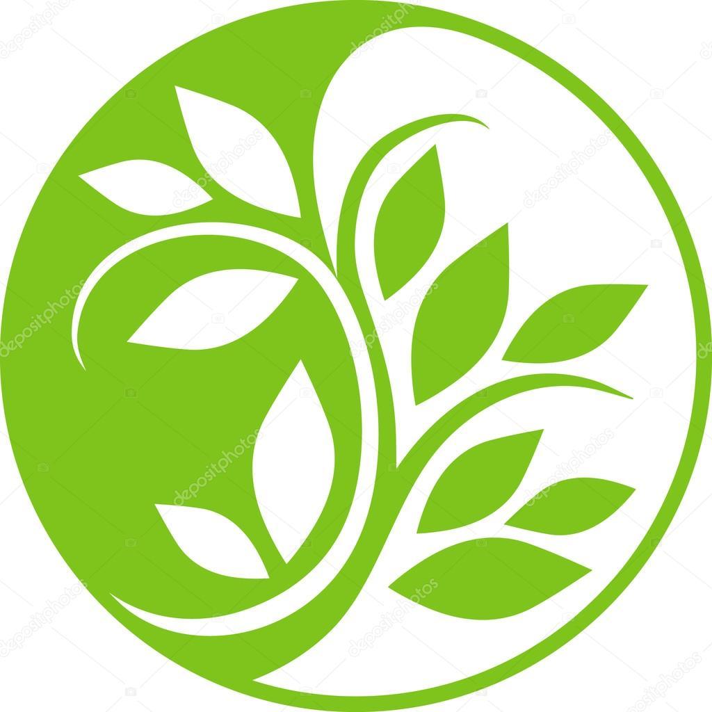 Yin Yang plant
