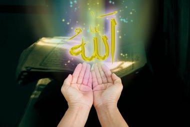 Hands of islam