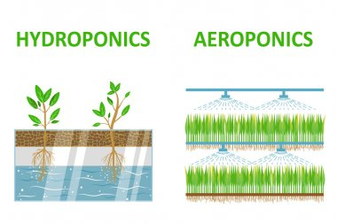 Aeroponic and hydroponic