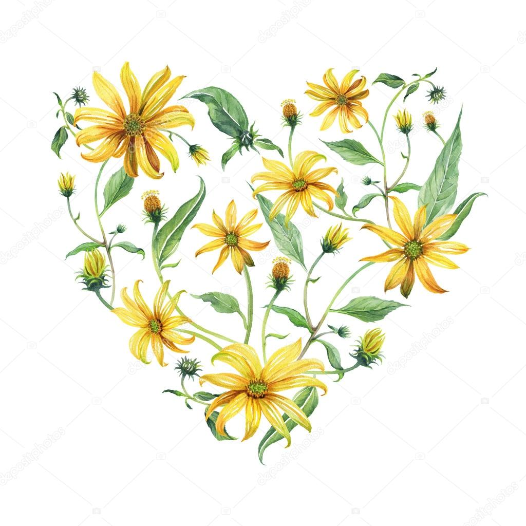 Watercolor Wreath Heart Shaped Yellow Daisies Stock Photo