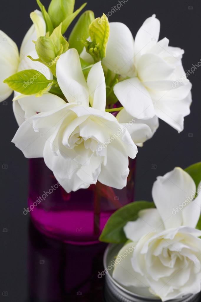 Blumenstrauß aus Gardenien — Stockfoto © almana4327 #85539838