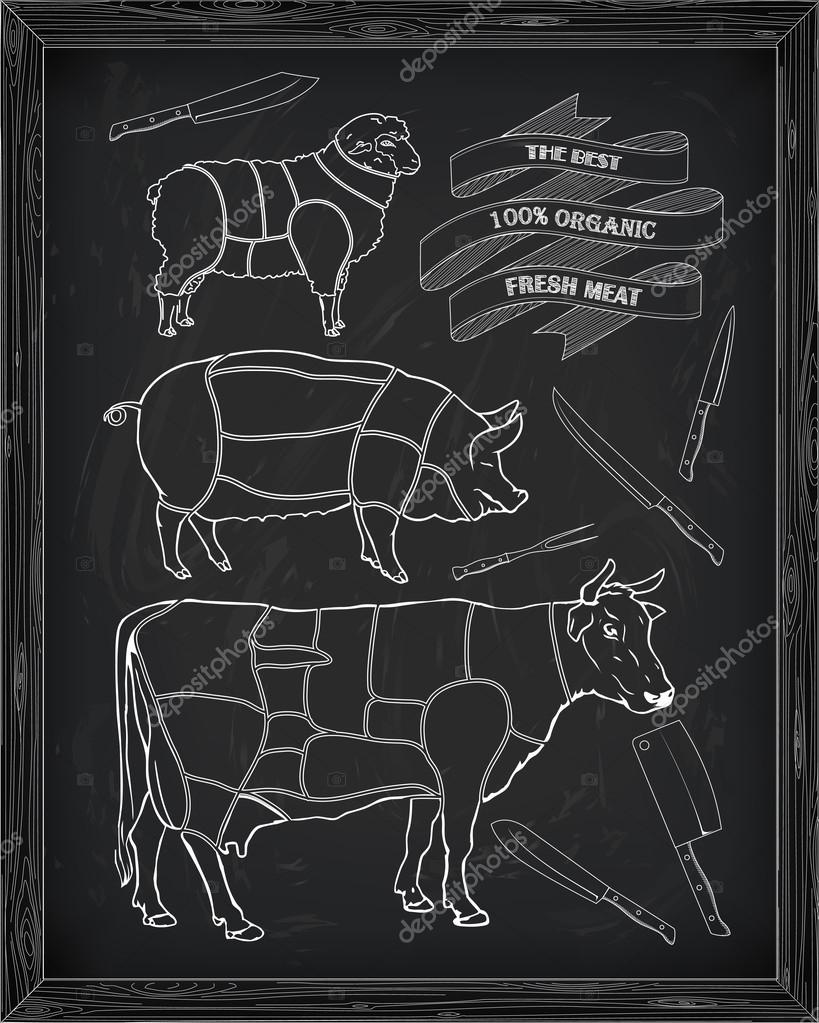 Butchering Beef Diagram Pork Lamb And Knife Stock Vector Pig Butcher Drawn In Chalk By Bugege