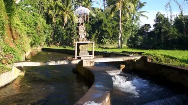 Rice Terraces Of Bali Island