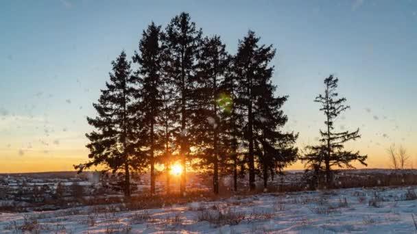 Erstaunliche Winterlandschaft mit romantischem nebligem Sonnenuntergang. Sanfter Schneefall im winterlich verschneiten Wald. Zeitraffer des Winteruntergangs