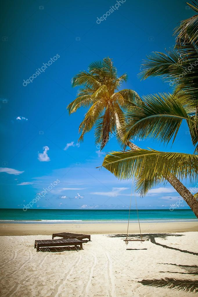 coconut tree and beach wooden bed on white sand with beautiful blue sea over clear blue sky