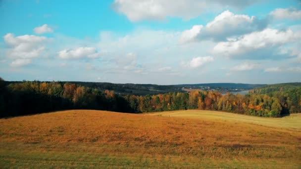 drone létání přes krásné zlaté podzimní krajiny, letecké přírodní záběry