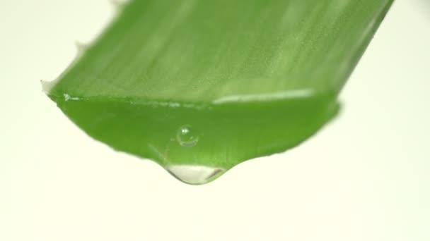 Aloe vera šťáva pokles