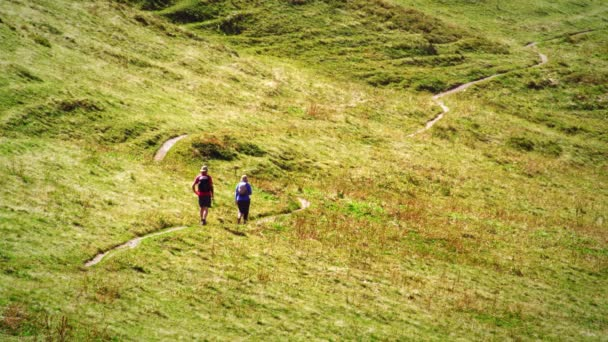 Swiss hikers on a trail through a meadow