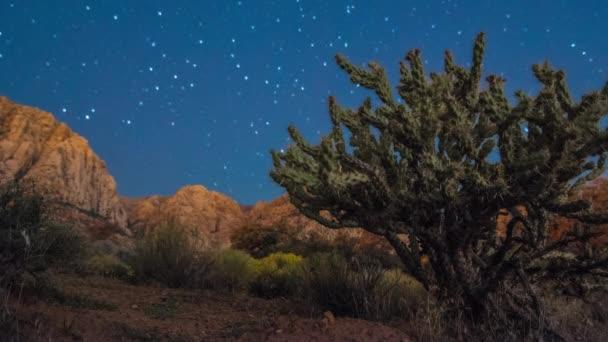 Nevada desert at night
