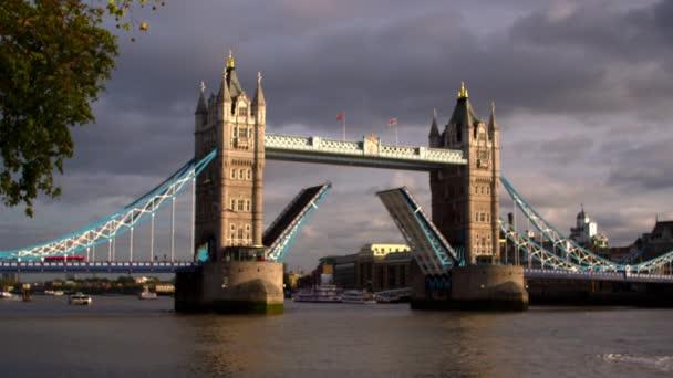 Ptáci létají před Tower Bridge
