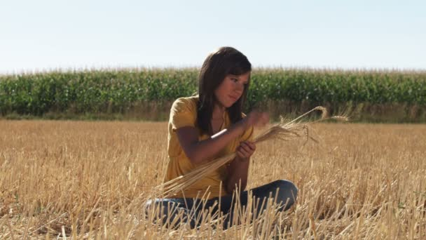 Girl sits in field and works with strands of wheat