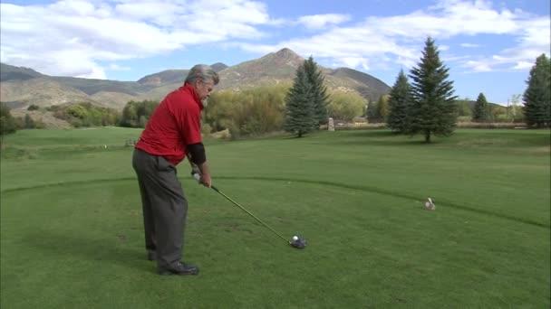 golfista odpal