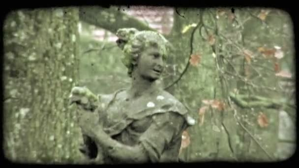 Woman Statue. Vintage stylized video clip.