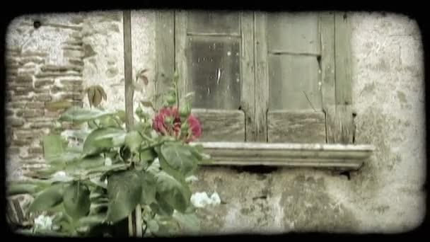 Zříceniny města. Vintage stylizované videoklip.