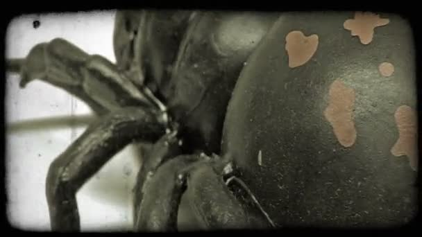 Extreme close-up of a toy spider.