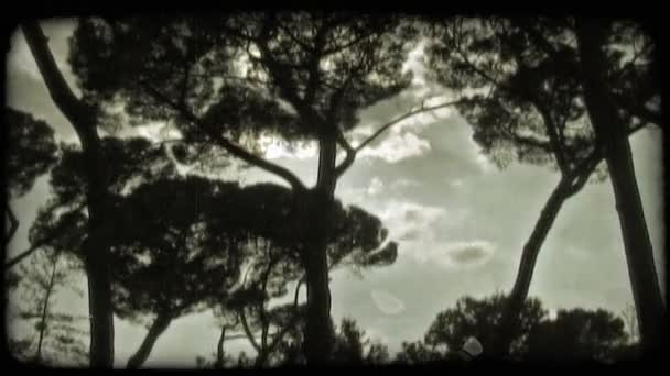 Sky Time Lapse. Vintage stylized video clip.