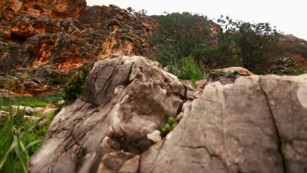 Stock Footage of rocky, yet green mountainside in Israel.