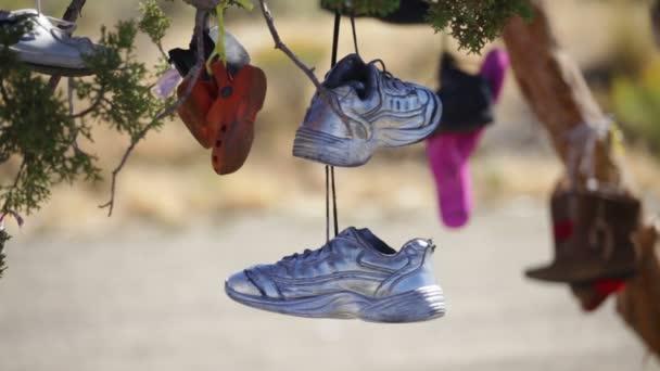 Viele Paar Schuhe, die an einem Baum hängen