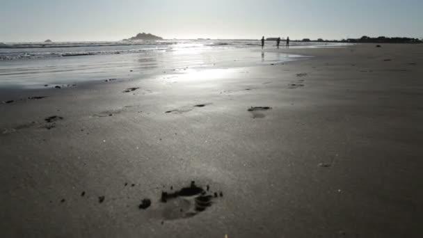 Three girls running on beach