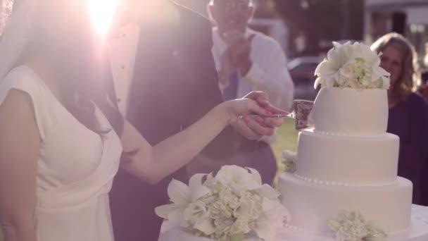 Das Anschneiden Der Hochzeitstorte Brautpaar Stockvideo