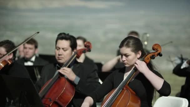 zenészek játszanak húros hangszer