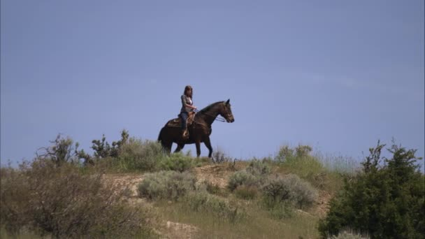 slow motion shot of woman on a horse in a high pasture vídeo de