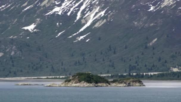 Time-Lapse pohled do a kolem ostrova v zátoce nedaleko Glacier Bay