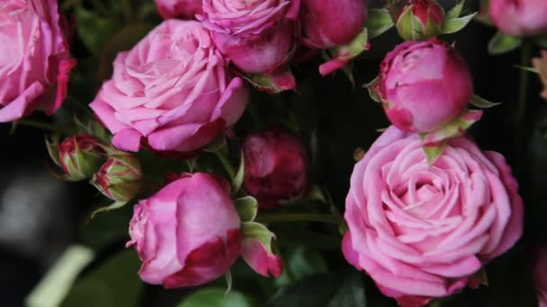 Kytici neuvěřitelně krásné růžové růže.