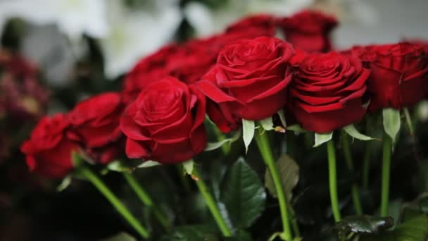 Úžasná kytice rudých růží