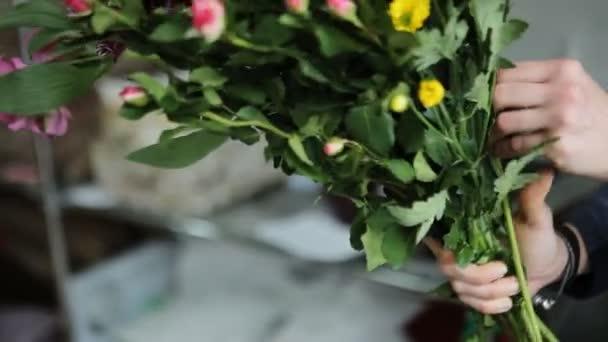 Různé typy a barvy čerstvé sezónní květiny