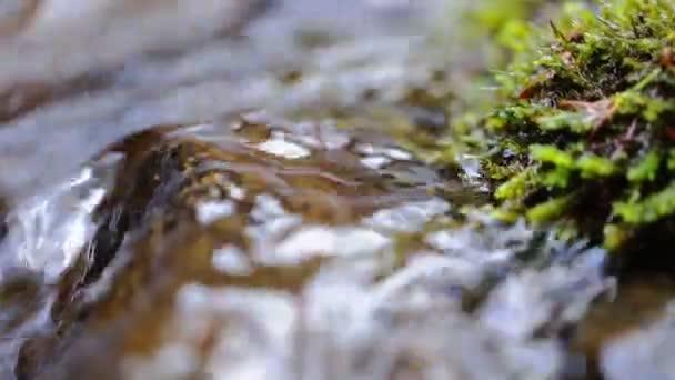 Říční vody kaskády a jeho okolí více mechem obrostlými skalami, zblízka