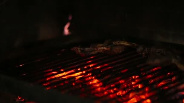 Grilování, smažení čerstvé maso, kuřecí Barbecue, klobása, Kebab, Hamburger, Bbq na pikniku