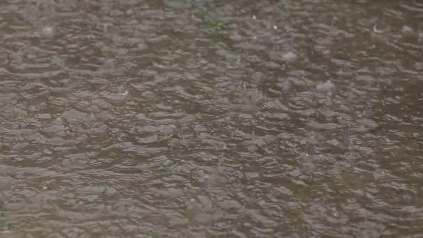 Pioggia caduta di gocce in pozzanghera creare ondulazioni dellacqua