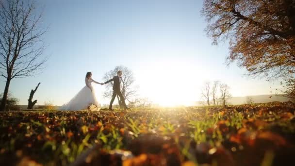 the bride and groom beautiful young couple holding hands walking in the park at sunset on the day of their wedding shot in slow motion  close up