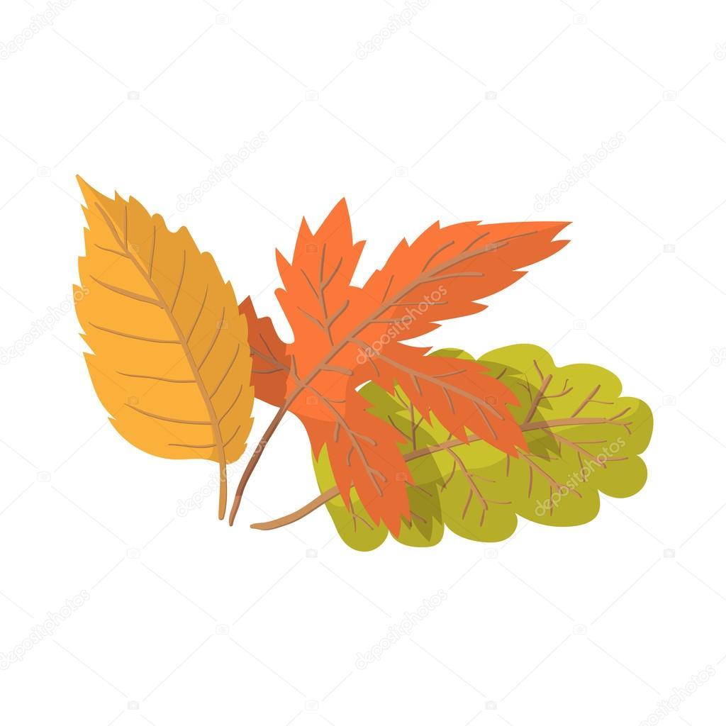 Vector dibujo hoja oto o icono de dibujos animados las - Descargar autumn leaves ...