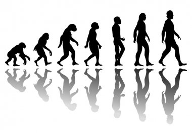 Silhouette man evolution