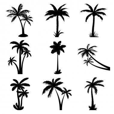 Tropical palm trees set