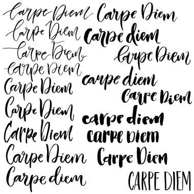 Carpe diem phrase set.